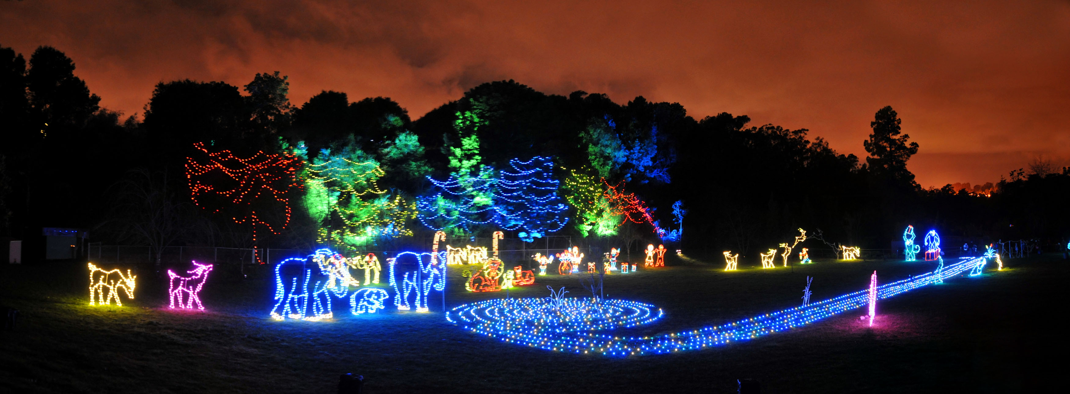 Christmas Lights at the Zoo? | Northern Virginia Real Estate | The ...